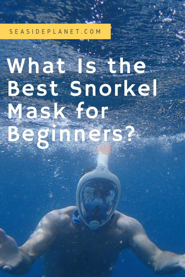 What Is the Best Snorkel Mask for Beginners?