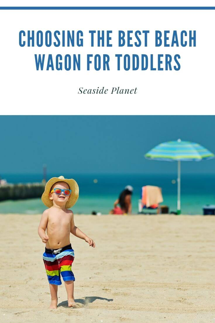 Choosing the Best Beach Wagon for Toddlers in 2021: Buyer's Guide