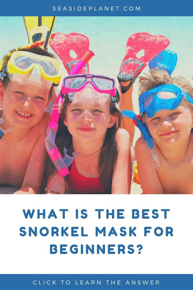 Wondering what the best snorkel mask for beginners is? Perfect because we\'ve scoured the market and found 5 great options for your next vacation! #snorkeling #beachvacation