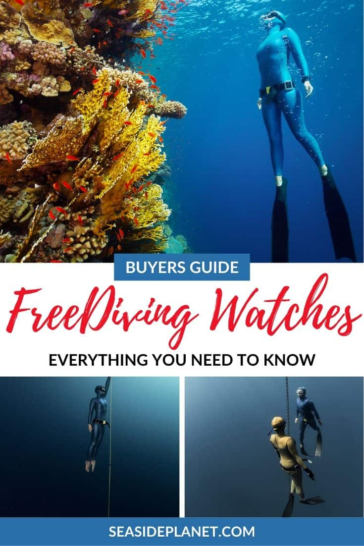 The 5 Best Free Diving Watches of 2020 [Buying Guide]