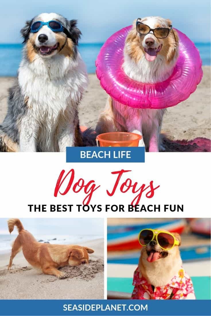 Are you looking for the best dog toys for the beach? Seaside Planet has you covered with 5 great options to keep your furry friend busy for hours.