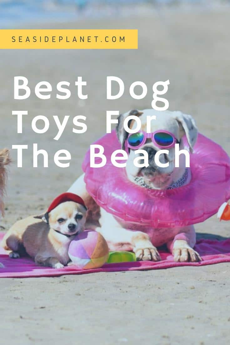Best Dog Toys for The Beach of 2019