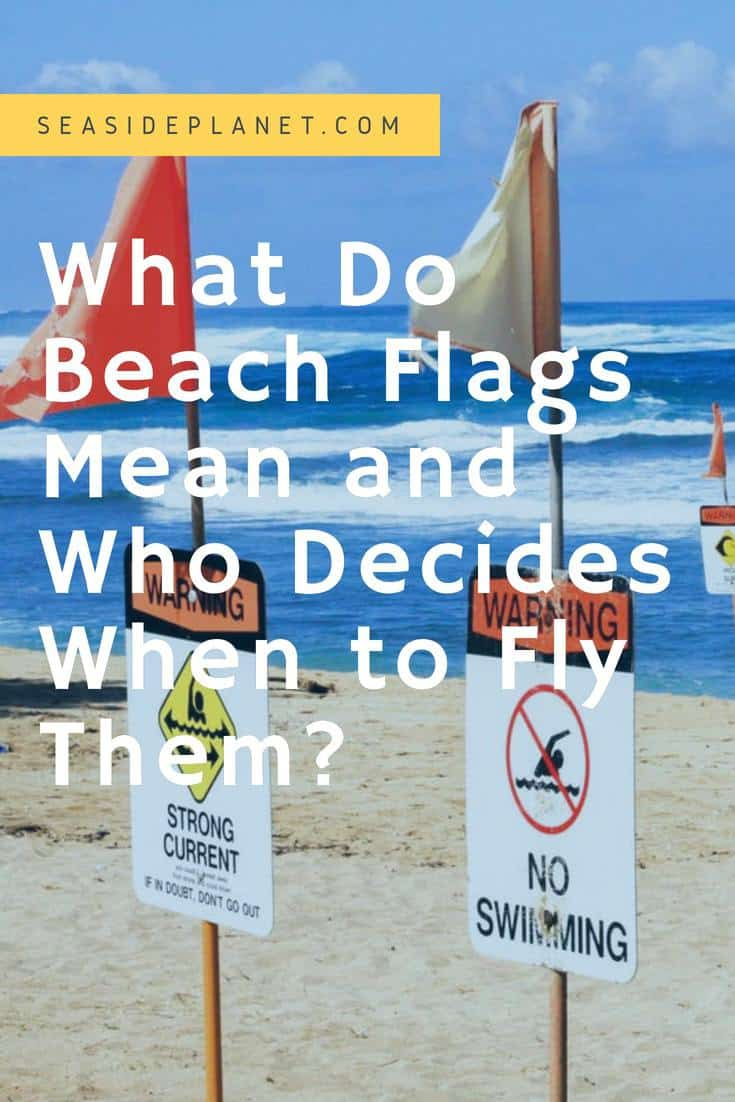 What Do Beach Flags Mean & When Do They Fly?