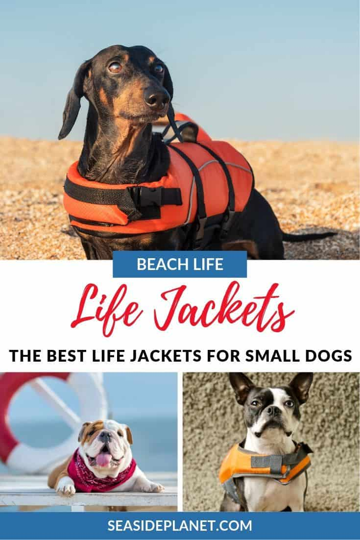 We\'ve worked hard to find the best life jackets for small dogs so you can take your furry friend with you without having to worry about their safety.