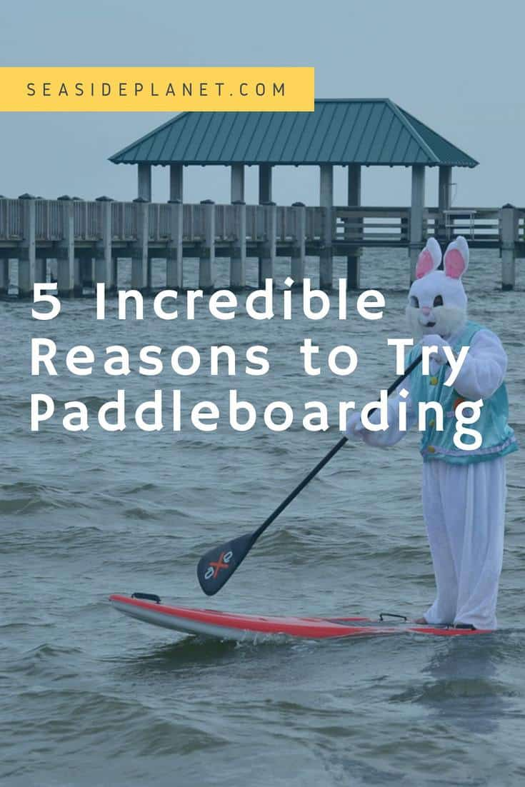 5 Incredible Reasons to Try Paddleboarding