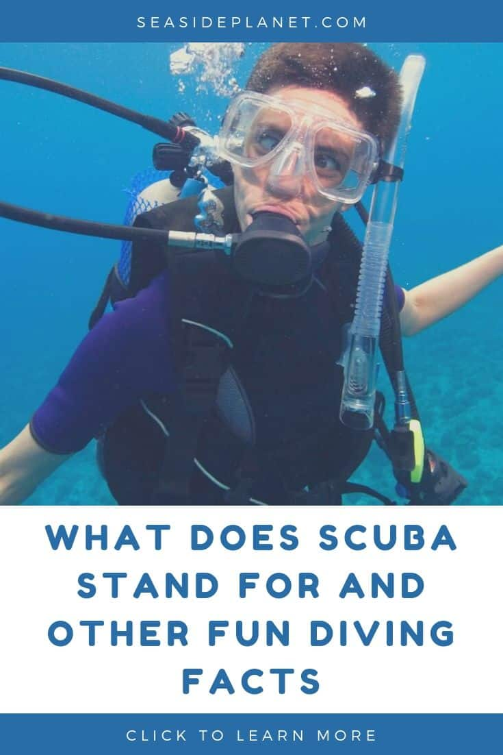 What Does SCUBA Stand For And Other Fun Diving Facts