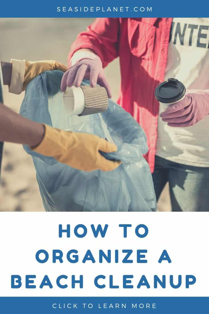 How to Organize a Beach Cleanup