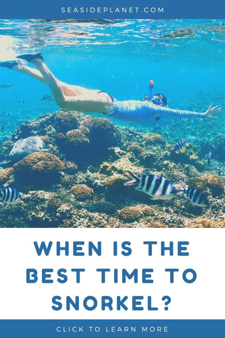 When is the Best Time to Snorkel?