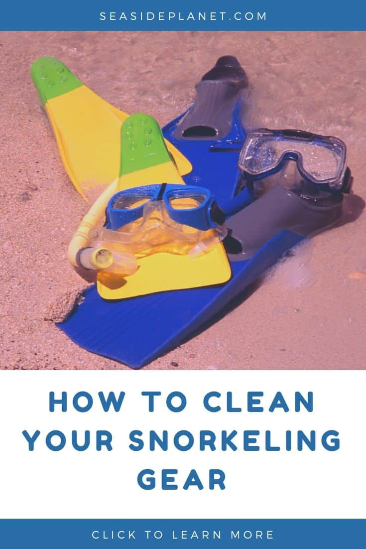 How to Clean Snorkel Gear: What You Need to Know