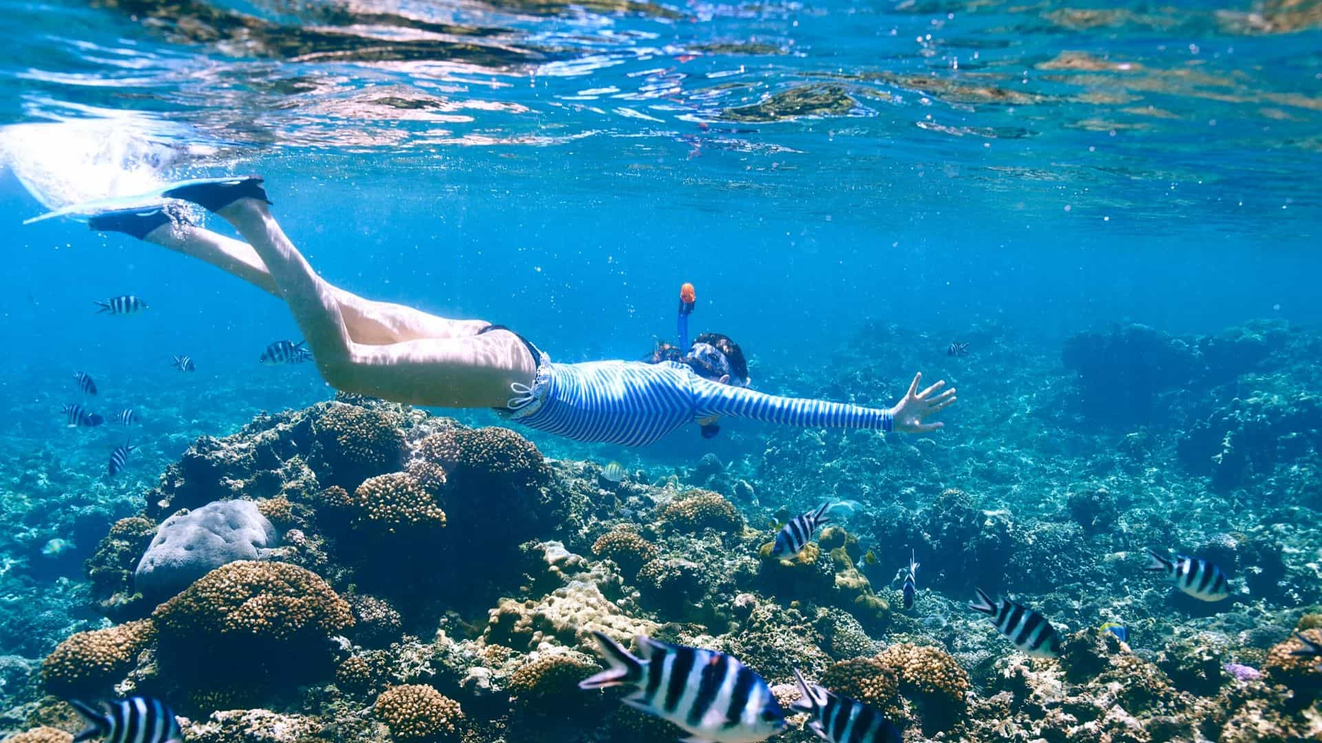 best time to snorkel