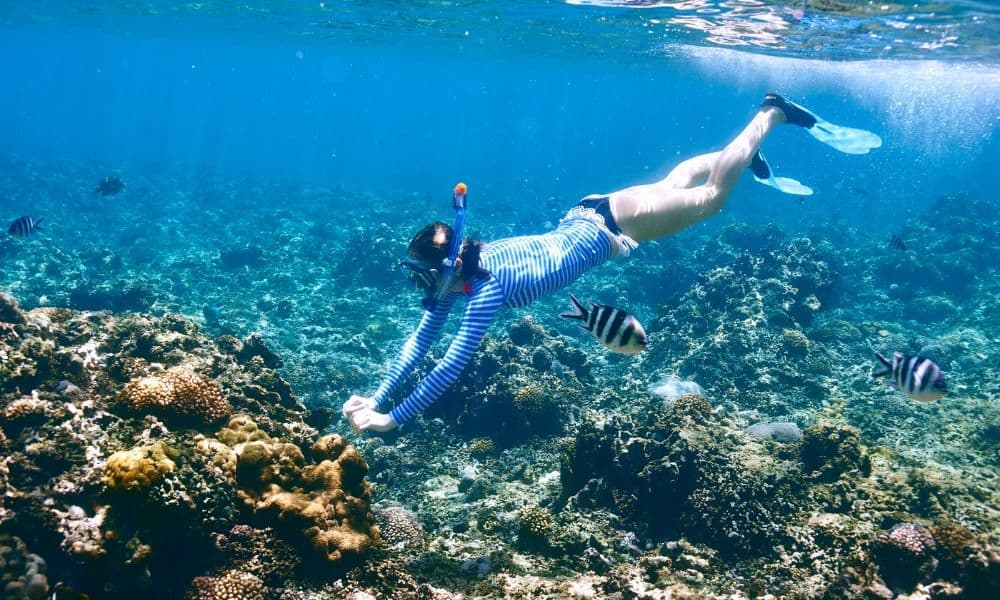 woman snorkeling near a coral reef