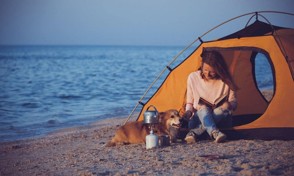 beach camping with a dog