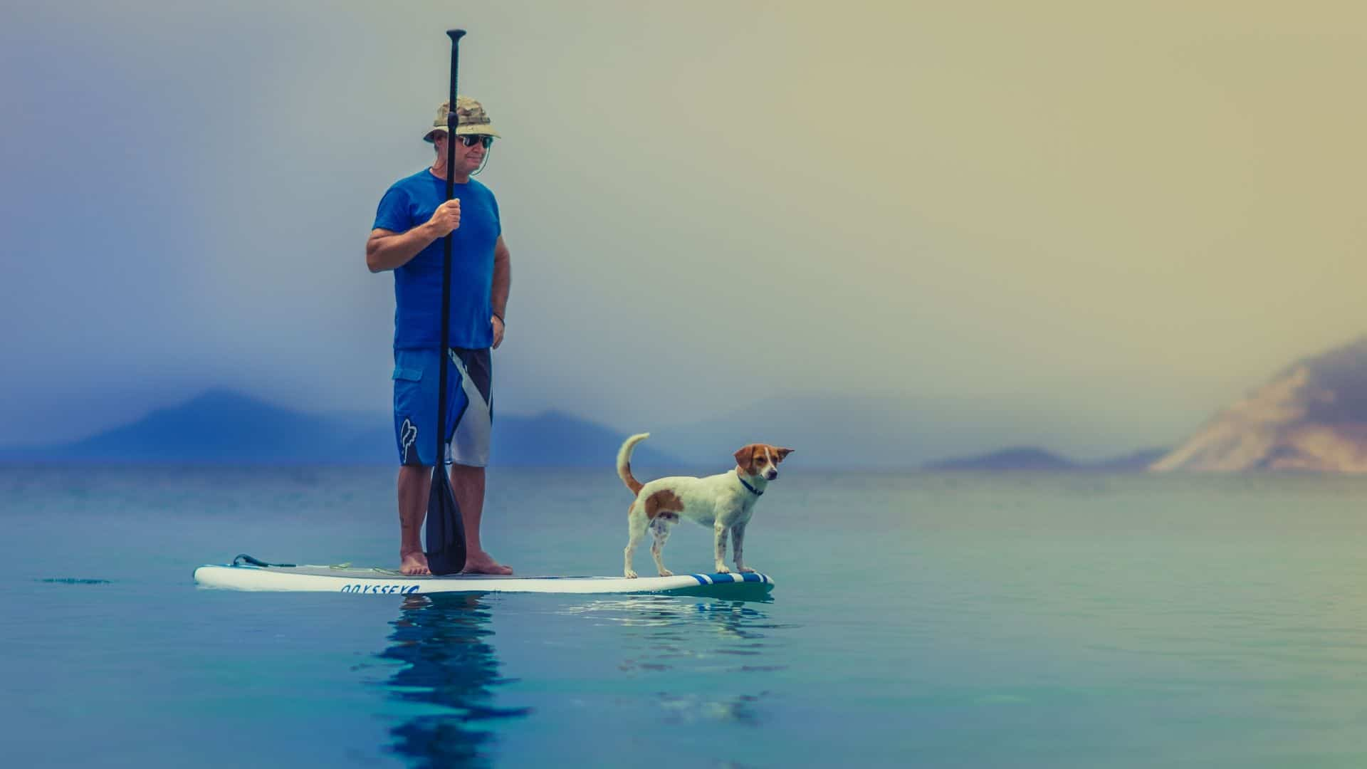 best paddle boards for dogs