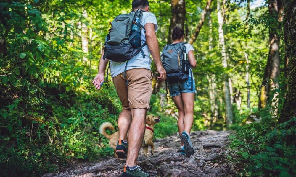 couple with a dog hiking