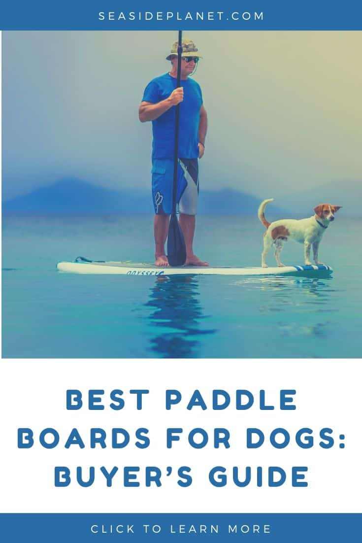 Best Paddle Boards for Dogs in 2020: Buyer's Guide
