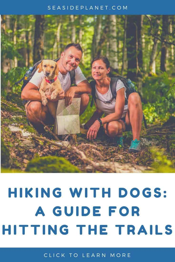 Hiking With Dogs: A Guide for Hitting the Trails in 2020