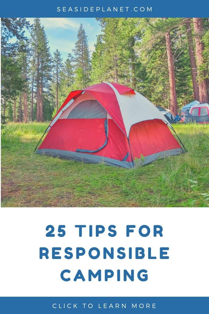 Tips for Responsible Camping in 2020: A Guide to Awareness