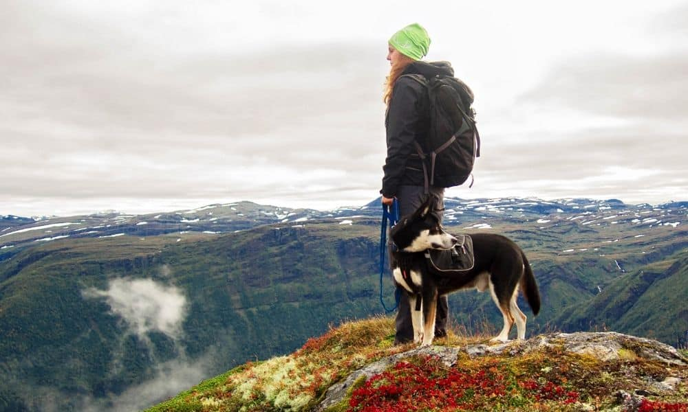 woman and dog on a mountain hike
